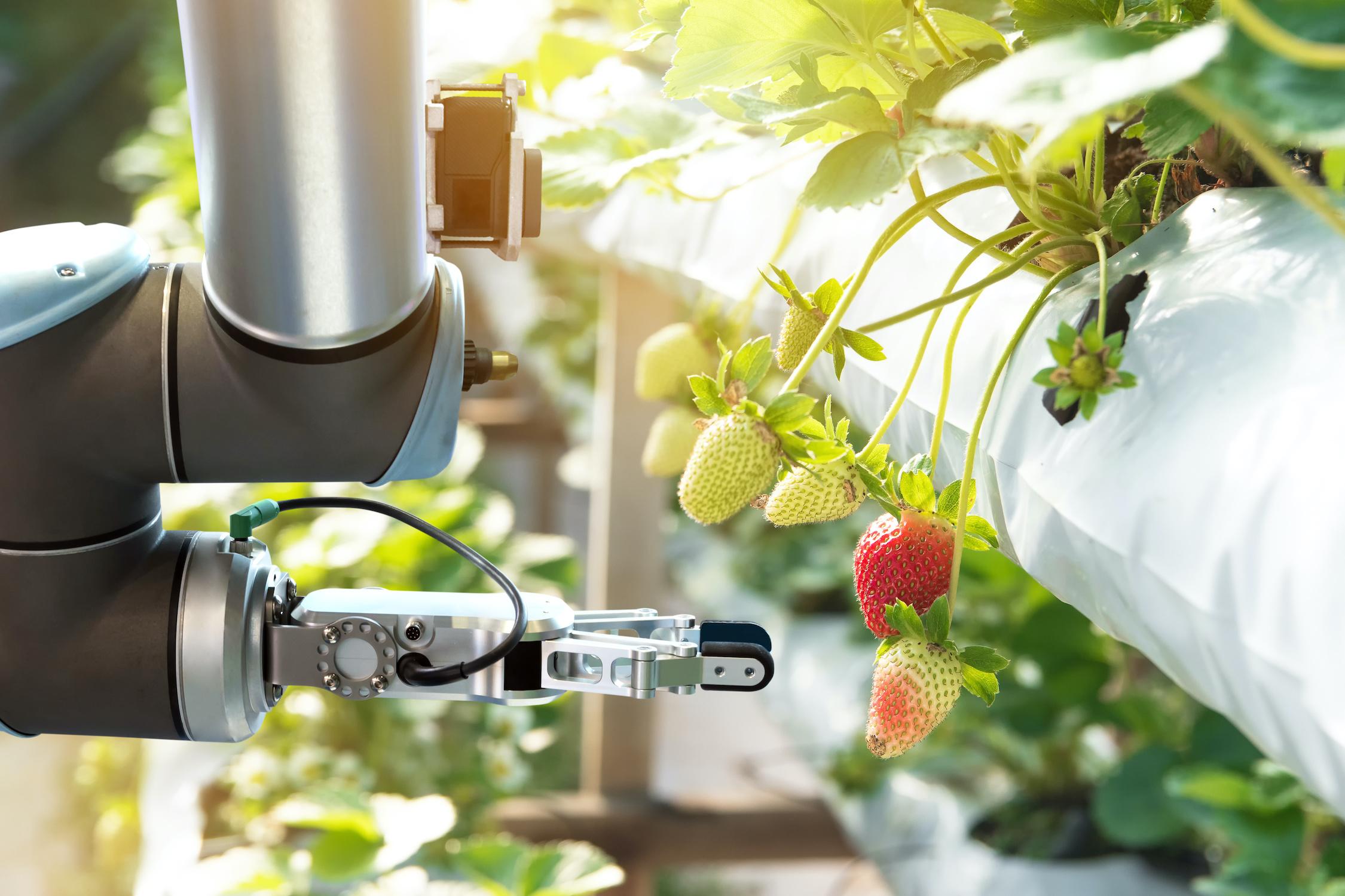 The Digital Future of Farming – Evolution against Obsolescence