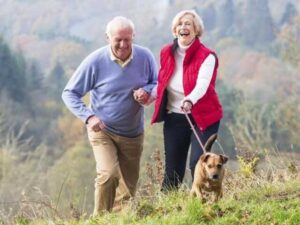 Pets and Older People Image